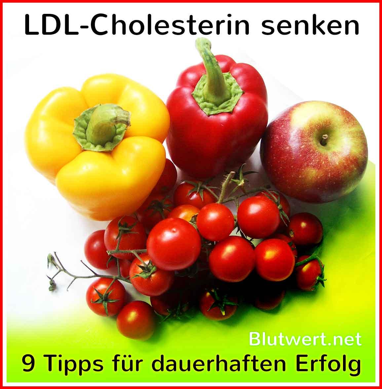 Eine Diät mit niedrigem Cholesterinspiegel erlaubte Lebensmittel