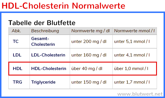 Diät senken Cholesterin und Triglyceride